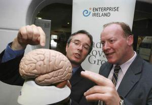 Enterprise Ireland executives wonder what that thing is.